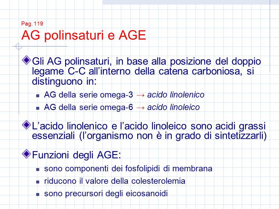 Pag. 119 AG polinsaturi e AGE Gli AG polinsaturi, in base alla posizione del doppio legame C-C all'interno della catena carboniosa, si distinguono in