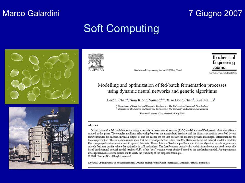 Marco Galardini7 Giugno 2007 Soft Computing