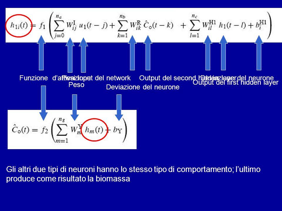 Funzione d'attivazionePesiInput del networkDeviazione del neuroneOutput del second hidden layer Output del first hidden layer Gli altri due tipi di ne