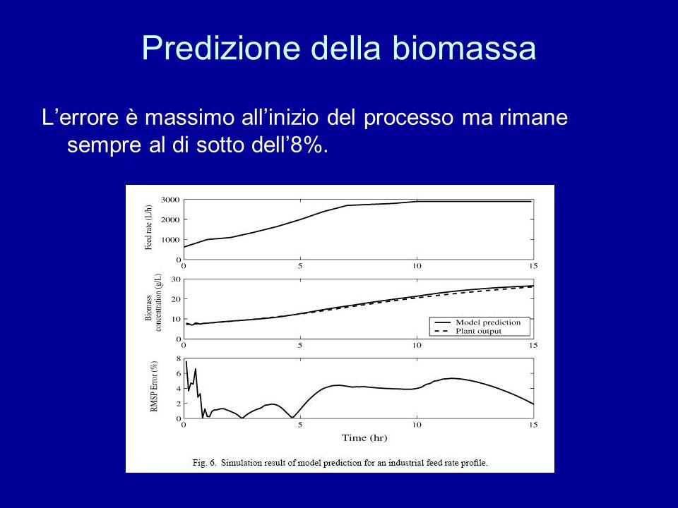 Predizione della biomassa L'errore è massimo all'inizio del processo ma rimane sempre al di sotto dell'8%.