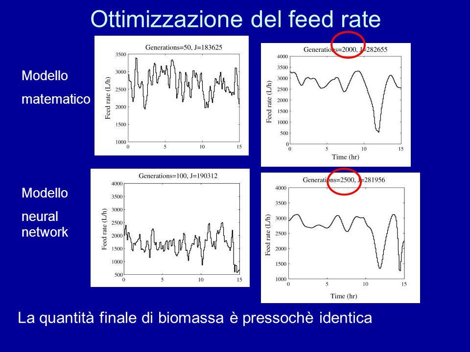 Ottimizzazione del feed rate Modello matematico Modello neural network La quantità finale di biomassa è pressochè identica