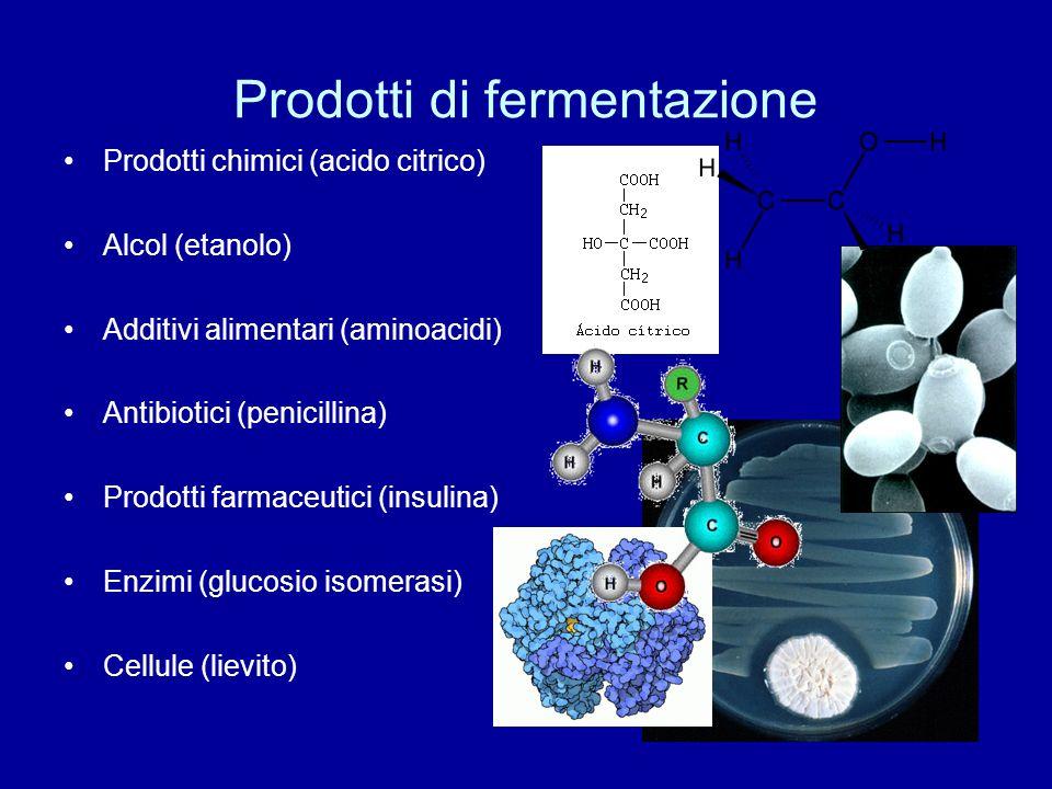 Prodotti di fermentazione Prodotti chimici (acido citrico) Alcol (etanolo) Additivi alimentari (aminoacidi) Antibiotici (penicillina) Prodotti farmace