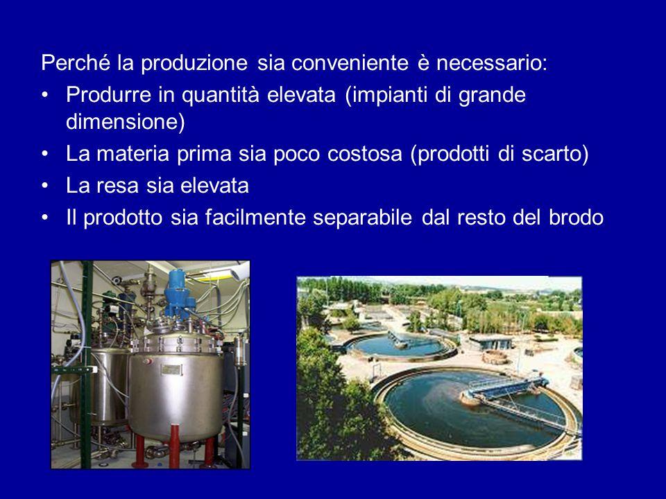 Perché la produzione sia conveniente è necessario: Produrre in quantità elevata (impianti di grande dimensione) La materia prima sia poco costosa (pro
