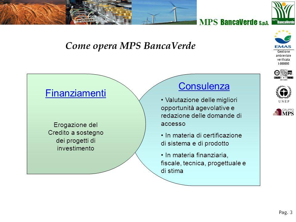 Gestione ambientale verificata I-000098 MPS BancaVerde S.p.A. Pag. 3 Consulenza Valutazione delle migliori opportunità agevolative e redazione delle d