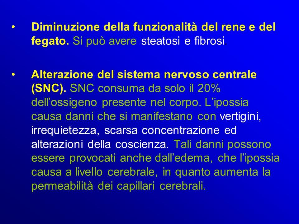 Diminuzione della funzionalità del rene e del fegato. Si può avere steatosi e fibrosi. Alterazione del sistema nervoso centrale (SNC). SNC consuma da