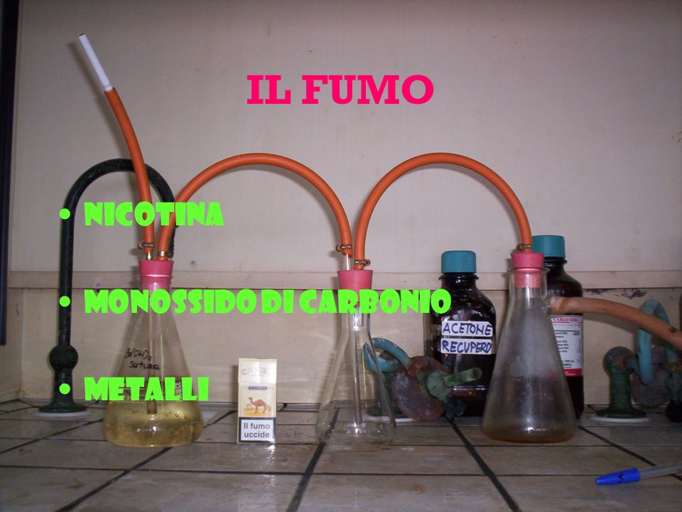 46 6-Metile-3,-5-Epptadien-2-One, 2-Metile-3-(para-IsopropilFenil) Propionaldehide, 5-Metile-3-Epxen-2-One, 1-Metile-3Metoxi-4-Isopropilbenzene, 4-Metile-3- Pentene-2-One, 2-Metile-4-Fenilbutiraldehide, 6-Metile-5-Eppten-2-One, 4-Metile- 5-Tiazoloeethanolo,4-Metile-5-Viniltiazoloe, Metile-alFa-Ionone, Metile-trans-2- Butenoic Acido, 4-MetileacetoFenone, para-Metileanisoloe, alFa-Metilebenzil Acetato, alFa-Metilebenzil Alcole, 2-Metilebutiraldehide, 3-Metilebutiraldehide, 2- Metilebutiric Acido, alfa-Metilecinnamaldehide, Metileciclopentenolone, 2- MetileEpptanoico Acido, 2-MetileEpsanoic Acido, 3-Metilepentanoic Acido, 4- Metilepentanoico Acido, 2-Metilepirazine, 5-Metilequinoxaline, 2- Metiletetrahidrofuran-3-One, (Metiletio)Metilepirazine (Mixture Of Isomers), 3- Metiletiopropionaldehide, Metile 3-Metiletiopropionato, 2-Metilevalerico Acido, Mimosa Puro and Estratto, Melassa Estratto e Tintura, Mountain Maple Estratto Solido, Mullein Flowers, Miristaldeide, Miristico Acido, Mirra Olio, Beta-Naptil Etile EtEpr, Nerolo, Neroloi Bigarde Olio, Neroloidolo, Nona-2-trans,6-cis-Dienal, 2,6- Nonadien-1-Olo, gamma-NonaLatone, Nonanal, Nonanoico Acido, Nonanone, trans-2- Nonen-1-Olo, 2-Nonenal, Nonil Acetato, Nutmeg Polvere ed Olio, Estratto ed Olio di Foglie di Quercia, Oak Moss Puro, 9,12-Otadecadienoico Acido (48%) e 9,12,15- Otadecatrienoico Acido (52%), delta-OtaLatone, gamma-OtaLatone, Otanal, Ottanoico Acido, 1-Otanolo, 2-Ottanone, 3-Oten-2-One, 1-Oten-3-Olo, 1-Oten-3-Il Acetato, 2-Otenal, Ottil Isobutirato, Acido Oleico, Oloibanum Olio, Opoponax Olio e Gomma, Orange Blossoms Wator, Puro, ed estratto di Foglie Puro, Arancio Olio and Estratto, Olio di Origano, Orris Olio Puro ed Estratto di Radice, Oli di Palmarosa, Acido Palmitico, Olio di Semi di Parslei, Olio di Patchouli, Omega- Pentadecalattone, 2,3-Pentanedione, 2-Pentanone, 4-Pentenoico Acido,