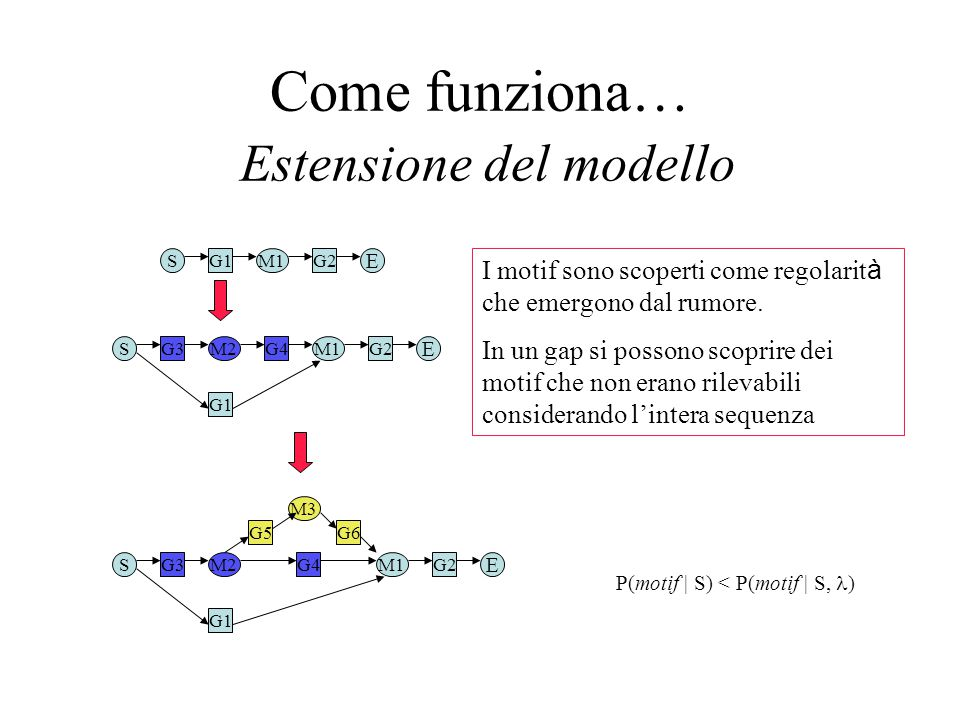 Come funziona… Estensione del modello SM1G1G2 E SM1 G1 G2 E M2G3G4 SM1 G1 G2 E M2G3G4 M3 G6G5 I motif sono scoperti come regolarit à che emergono dal rumore.