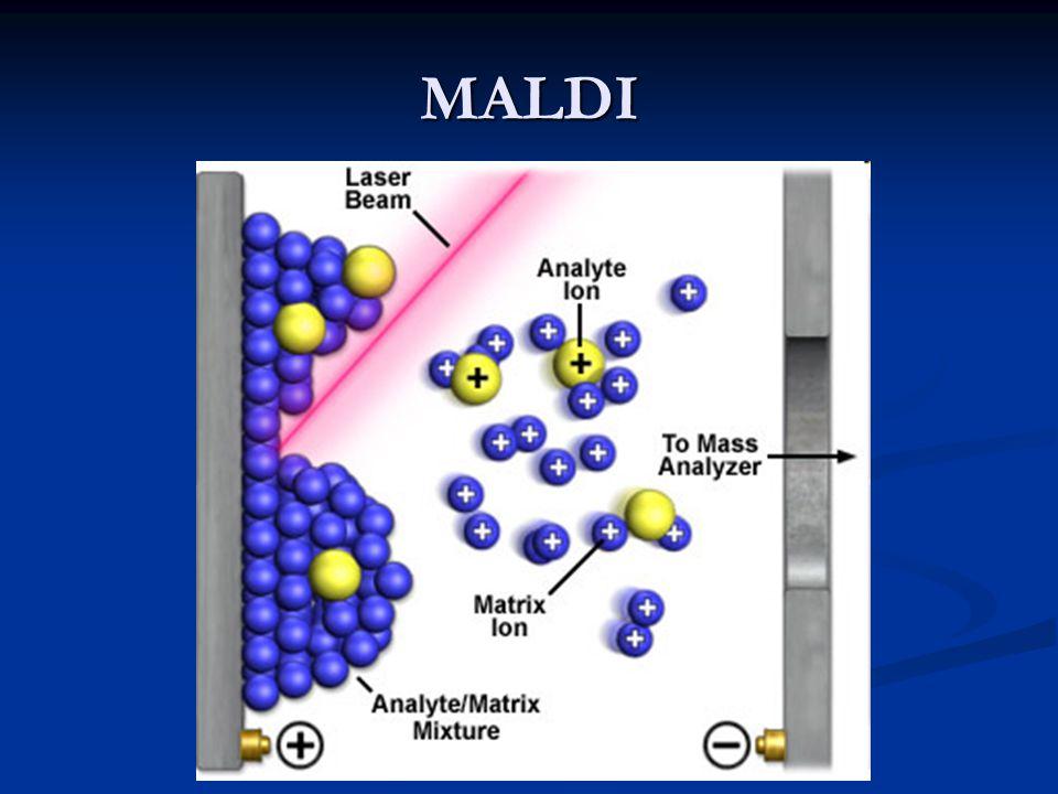 Analizzatore a settore magnetico Piastra collettrice con fenditura (serve a raccogliere gli ioni)
