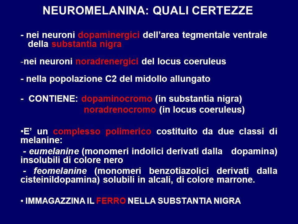 NEUROMELANINA: QUALI CERTEZZE - nei neuroni dopaminergici dell'area tegmentale ventrale della substantia nigra -nei neuroni noradrenergici del locus c