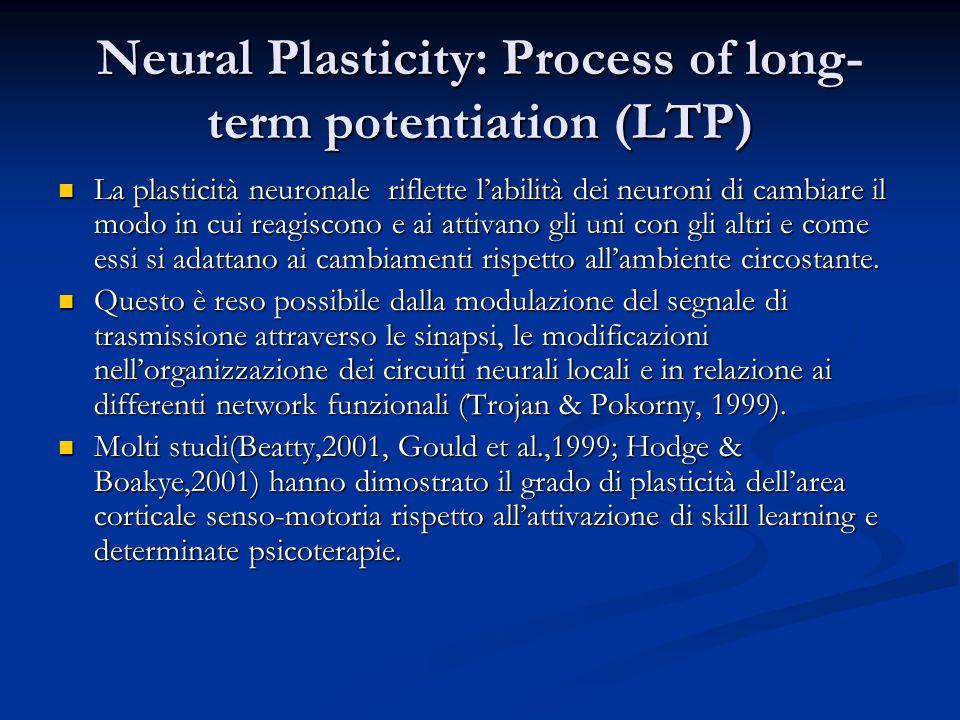 Neural Plasticity: Process of long- term potentiation (LTP) La plasticità neuronale riflette l'abilità dei neuroni di cambiare il modo in cui reagiscono e ai attivano gli uni con gli altri e come essi si adattano ai cambiamenti rispetto all'ambiente circostante.