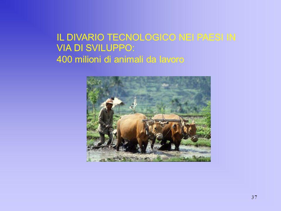 37 IL DIVARIO TECNOLOGICO NEI PAESI IN VIA DI SVILUPPO: 400 milioni di animali da lavoro