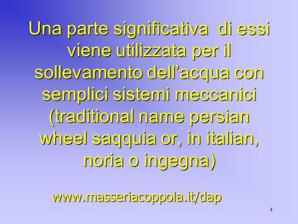 4 Una parte significativa di essi viene utilizzata per il sollevamento dell'acqua con semplici sistemi meccanici (traditional name persian wheel saqquia or, in italian, noria o ingegna) www.masseriacoppola.it/dap