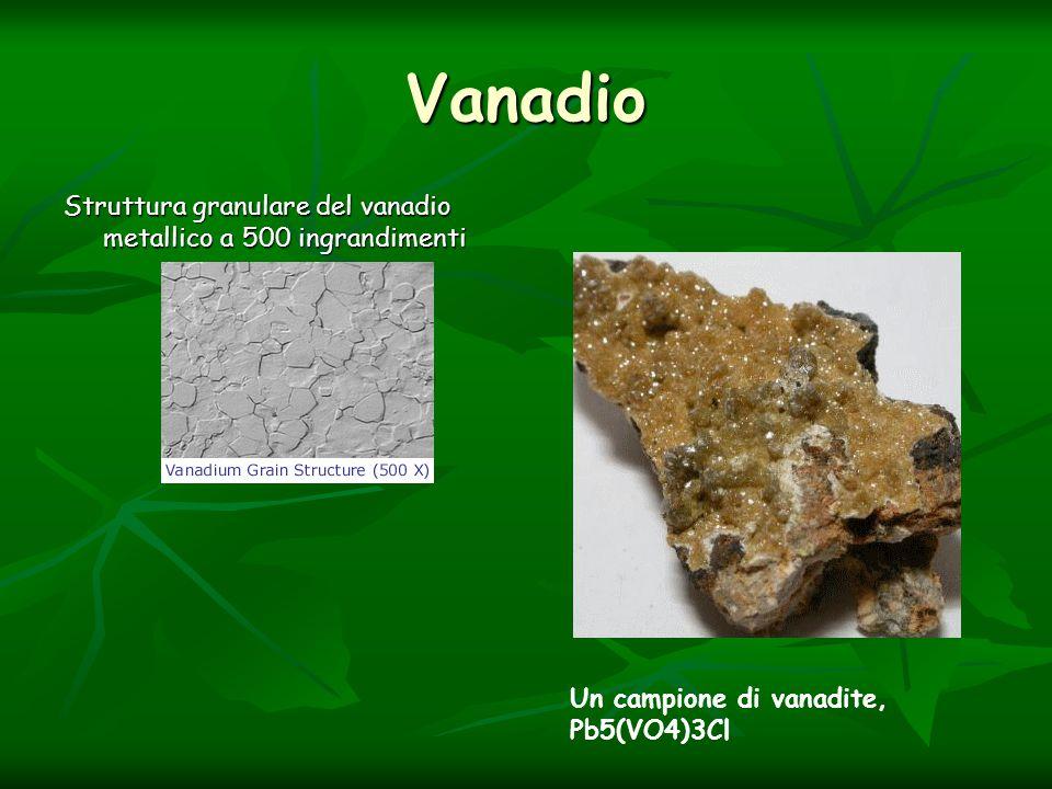 Vanadio Struttura granulare del vanadio metallico a 500 ingrandimenti Un campione di vanadite, Pb5(VO4)3Cl