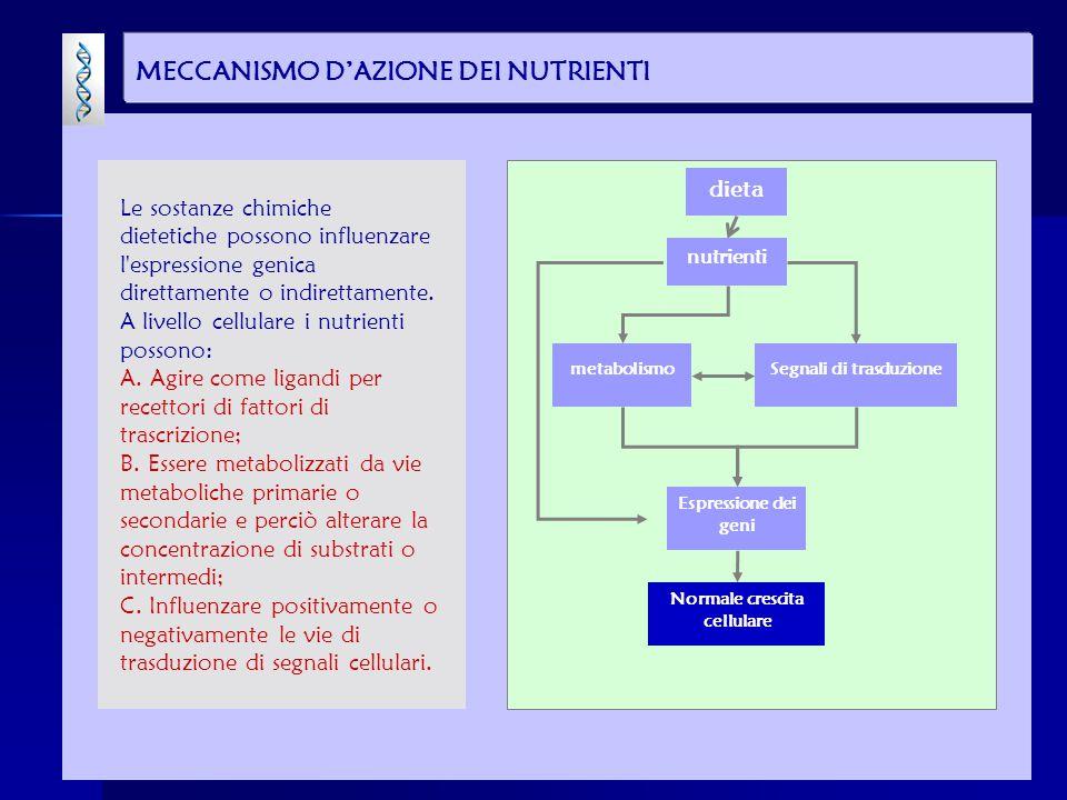MECCANISMO D'AZIONE DEI NUTRIENTI dieta Segnali di trasduzionemetabolismo Normale crescita cellulare Espressione dei geni nutrienti Le sostanze chimic