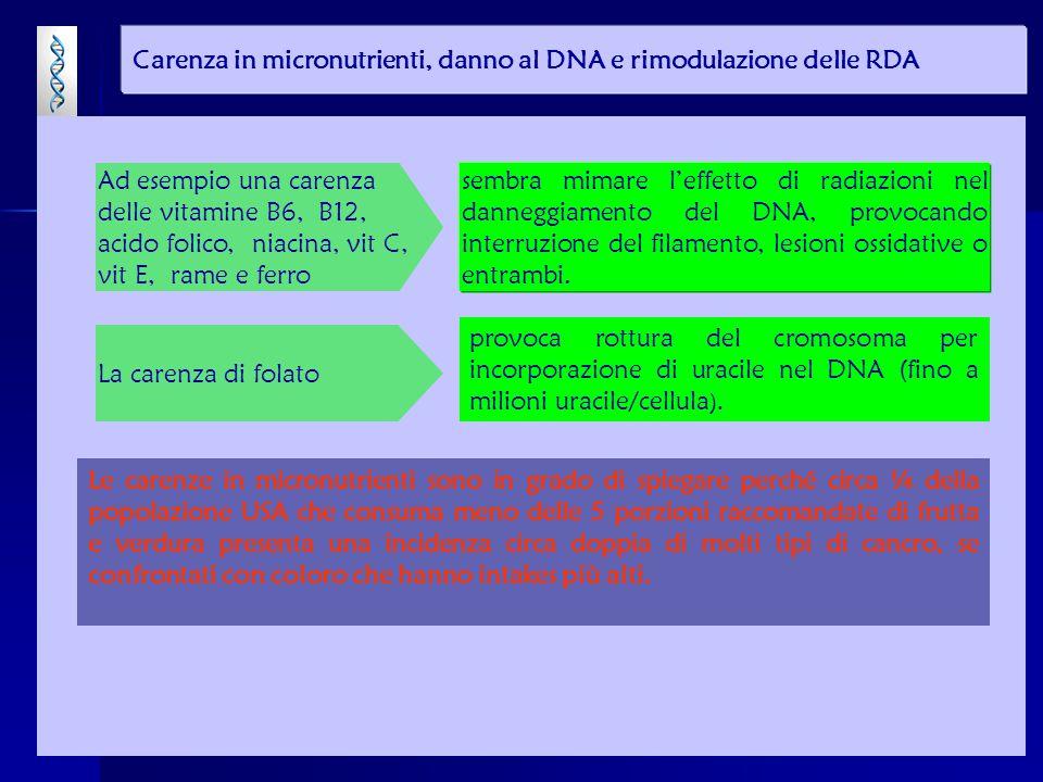 provoca rottura del cromosoma per incorporazione di uracile nel DNA (fino a milioni uracile/cellula ). Carenza in micronutrienti, danno al DNA e rimod