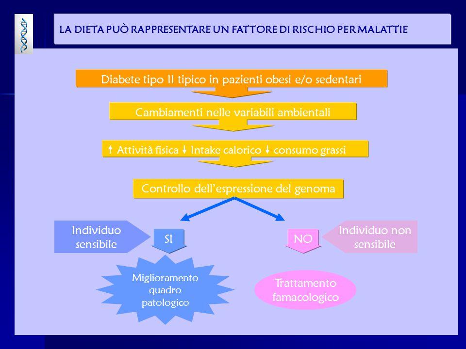 Diabete tipo II tipico in pazienti obesi e/o sedentari Cambiamenti nelle variabili ambientali  Attività fisica  Intake calorico  consumo grassi Controllo dell'espressione del genoma Miglioramento quadro patologico Individuo sensibile Trattamento famacologico Individuo non sensibile SINO