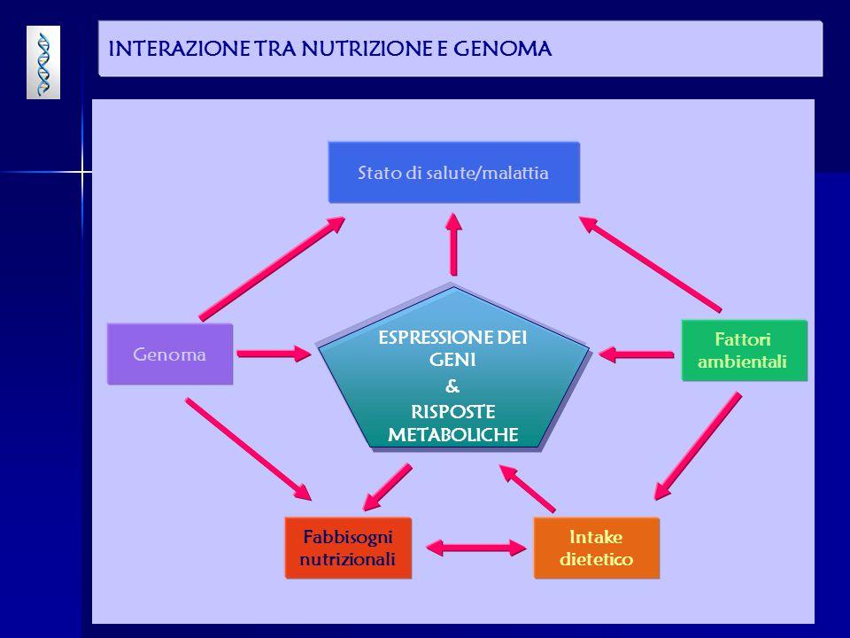 INTERAZIONE TRA NUTRIZIONE E GENOMA ESPRESSIONE DEI GENI & RISPOSTE METABOLICHE Stato di salute/malattia Intake dietetico Fattori ambientali Genoma Fabbisogni nutrizionali