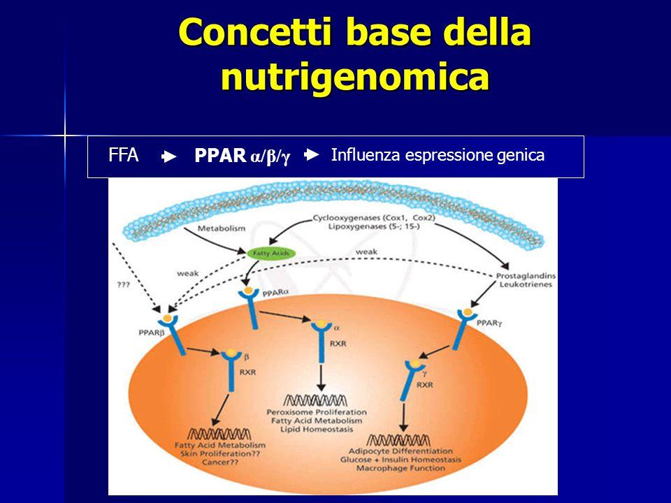FFA PPAR α/β/γ Influenza espressione genica