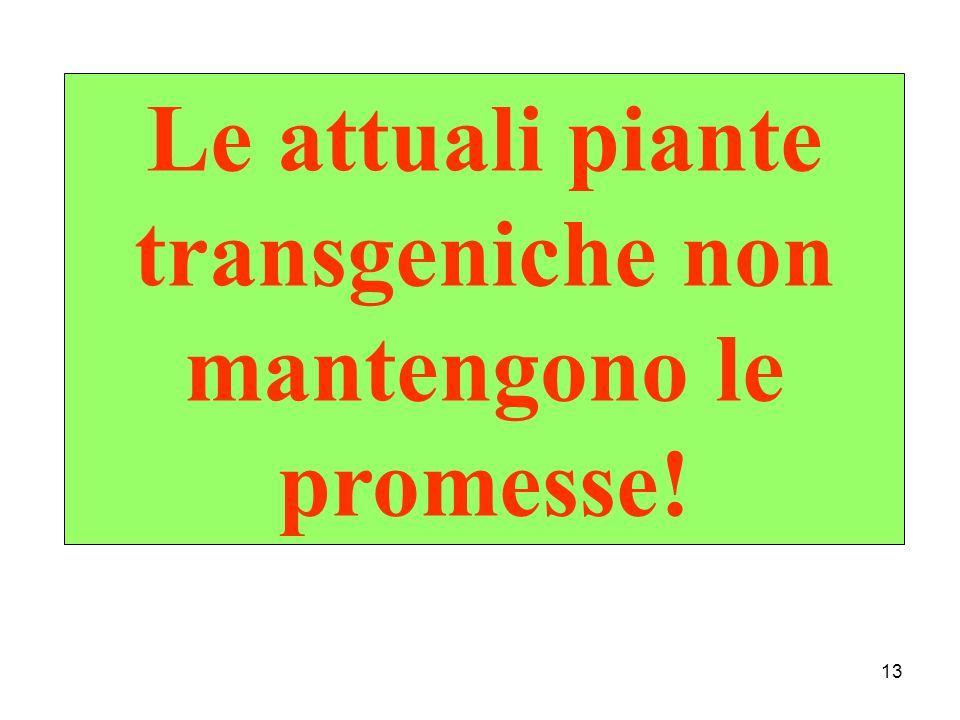 13 Le attuali piante transgeniche non mantengono le promesse!
