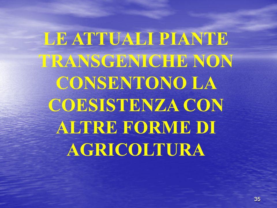 35 LE ATTUALI PIANTE TRANSGENICHE NON CONSENTONO LA COESISTENZA CON ALTRE FORME DI AGRICOLTURA