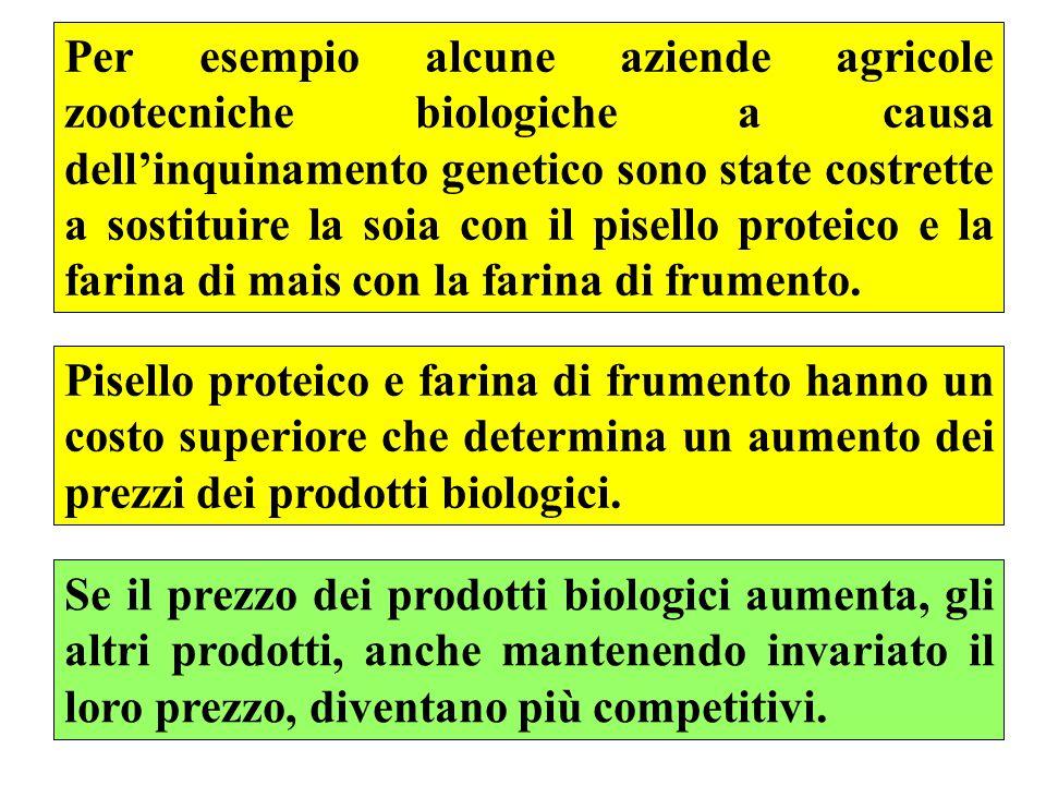 41 Per esempio alcune aziende agricole zootecniche biologiche a causa dell'inquinamento genetico sono state costrette a sostituire la soia con il pisello proteico e la farina di mais con la farina di frumento.