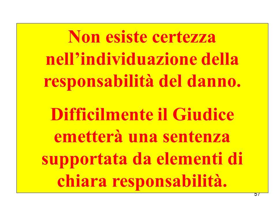 57 Non esiste certezza nell'individuazione della responsabilità del danno.