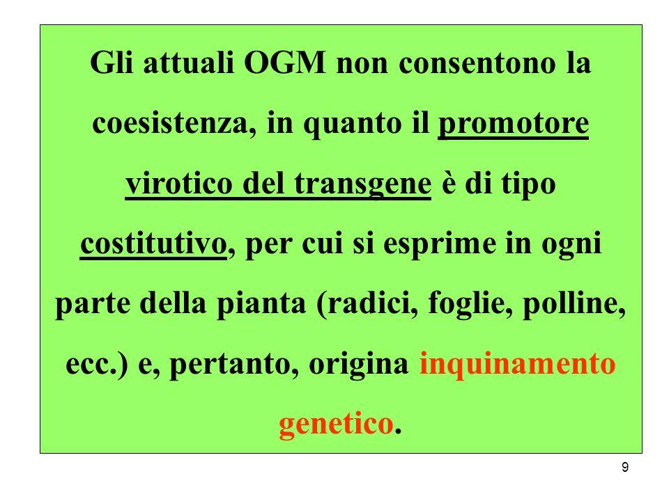 9 Gli attuali OGM non consentono la coesistenza, in quanto il promotore virotico del transgene è di tipo costitutivo, per cui si esprime in ogni parte della pianta (radici, foglie, polline, ecc.) e, pertanto, origina inquinamento genetico.