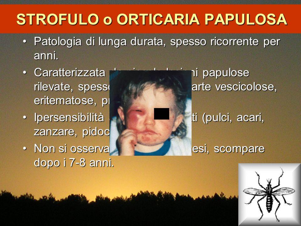 STROFULO o ORTICARIA PAPULOSA Patologia di lunga durata, spesso ricorrente per anni.Patologia di lunga durata, spesso ricorrente per anni. Caratterizz