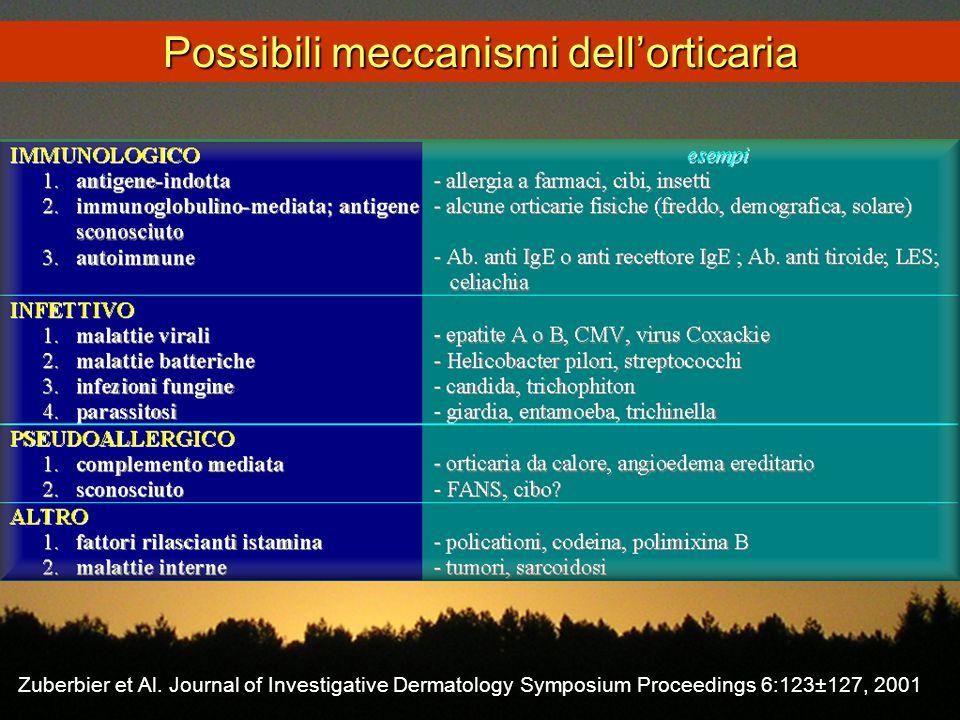 Possibili meccanismi dell'orticaria Zuberbier et Al. Journal of Investigative Dermatology Symposium Proceedings 6:123±127, 2001