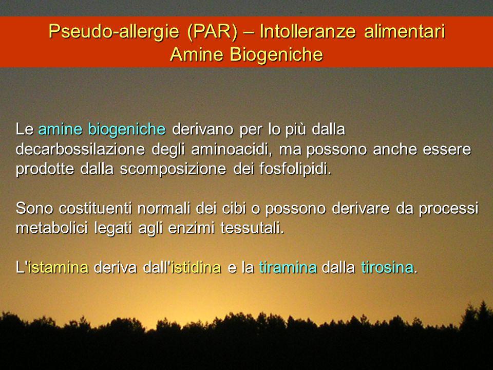Le amine biogeniche derivano per lo più dalla decarbossilazione degli aminoacidi, ma possono anche essere prodotte dalla scomposizione dei fosfolipidi