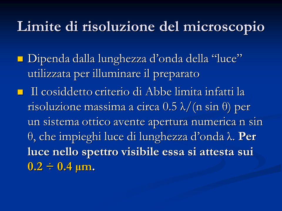 """Limite di risoluzione del microscopio Dipenda dalla lunghezza d'onda della """"luce"""" utilizzata per illuminare il preparato Dipenda dalla lunghezza d'ond"""