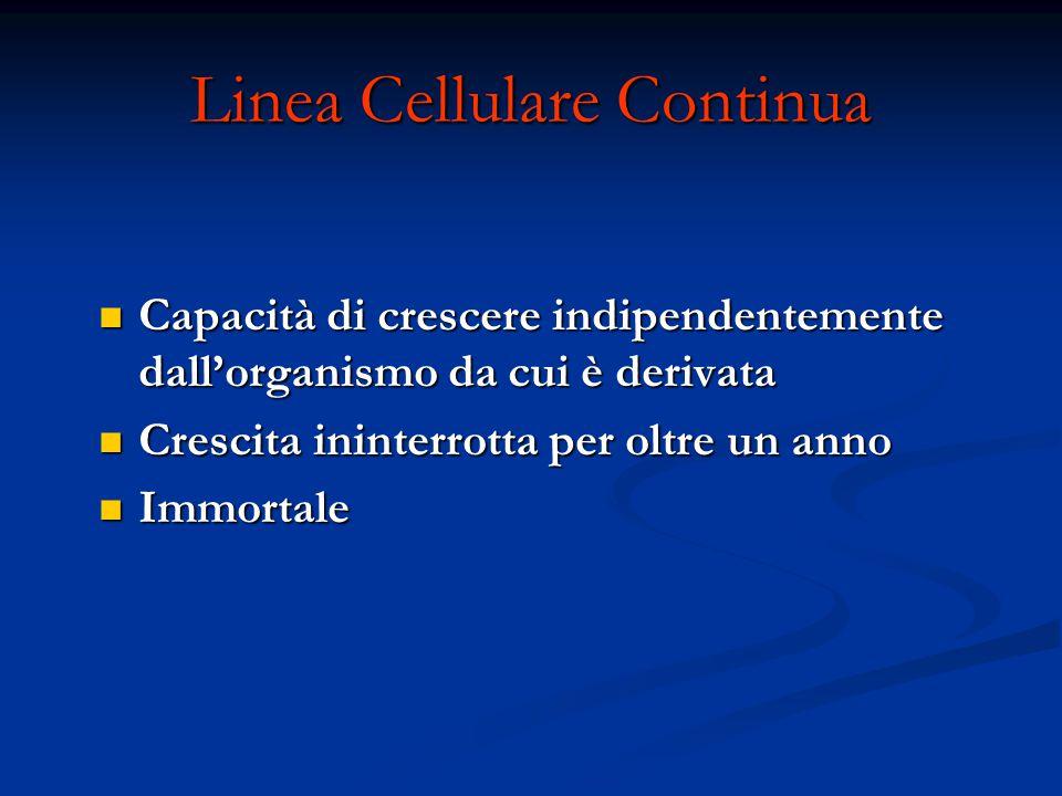Linea Cellulare Continua Capacità di crescere indipendentemente dall'organismo da cui è derivata Capacità di crescere indipendentemente dall'organismo