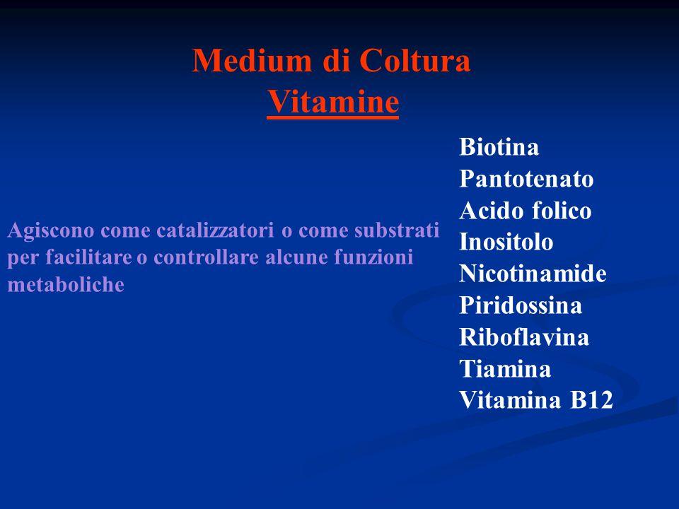 Medium di Coltura Vitamine Biotina Pantotenato Acido folico Inositolo Nicotinamide Piridossina Riboflavina Tiamina Vitamina B12 Agiscono come catalizz