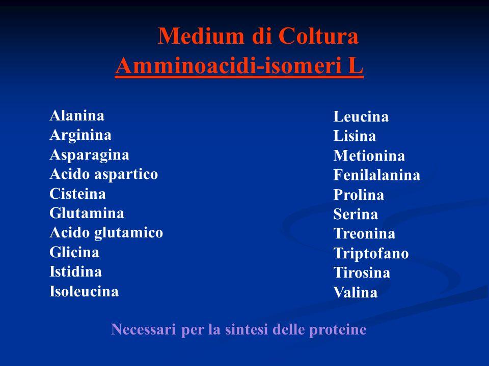 Medium di Coltura Amminoacidi-isomeri L Alanina Arginina Asparagina Acido aspartico Cisteina Glutamina Acido glutamico Glicina Istidina Isoleucina Leu