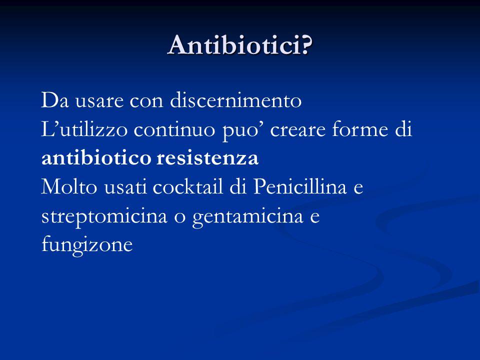 Antibiotici? Da usare con discernimento L'utilizzo continuo puo' creare forme di antibiotico resistenza Molto usati cocktail di Penicillina e streptom