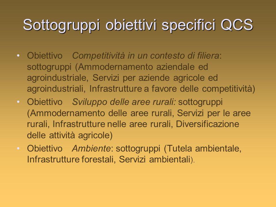 Sottogruppi obiettivi specifici QCS ObiettivoCompetitività in un contesto di filiera: sottogruppi (Ammodernamento aziendale ed agroindustriale, Servizi per aziende agricole ed agroindustriali, Infrastrutture a favore delle competitività) ObiettivoSviluppo delle aree rurali: sottogruppi (Ammodernamento delle aree rurali, Servizi per le aree rurali, Infrastrutture nelle aree rurali, Diversificazione delle attività agricole) ObiettivoAmbiente: sottogruppi (Tutela ambientale, Infrastrutture forestali, Servizi ambientali ).