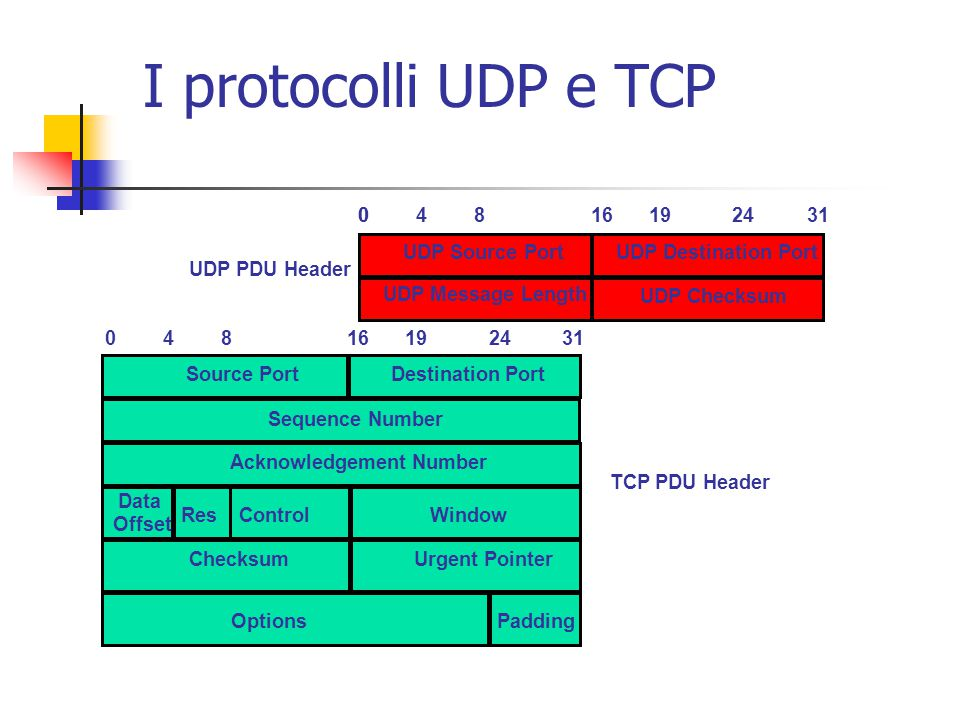 I protocolli UDP e TCP 04816192431 Source PortDestination Port Sequence Number Acknowledgement Number Checksum Options Window Urgent Pointer Data Offset ResControl Padding UDP PDU Header 004816192431 UDP Source PortUDP Destination Port UDP Checksum UDP Message Length TCP PDU Header