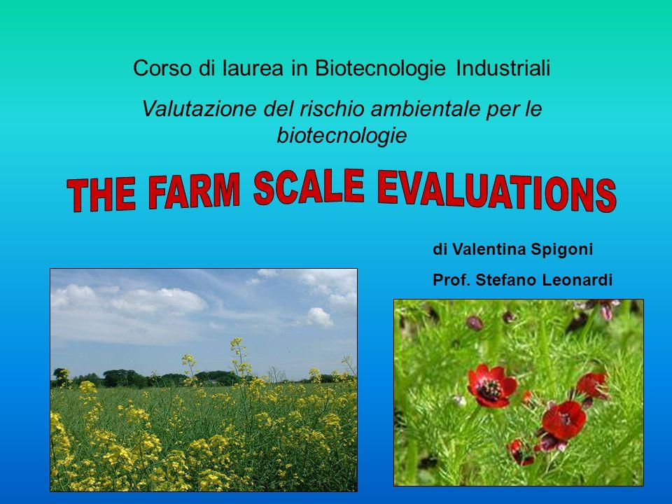 Corso di laurea in Biotecnologie Industriali Valutazione del rischio ambientale per le biotecnologie di Valentina Spigoni Prof.