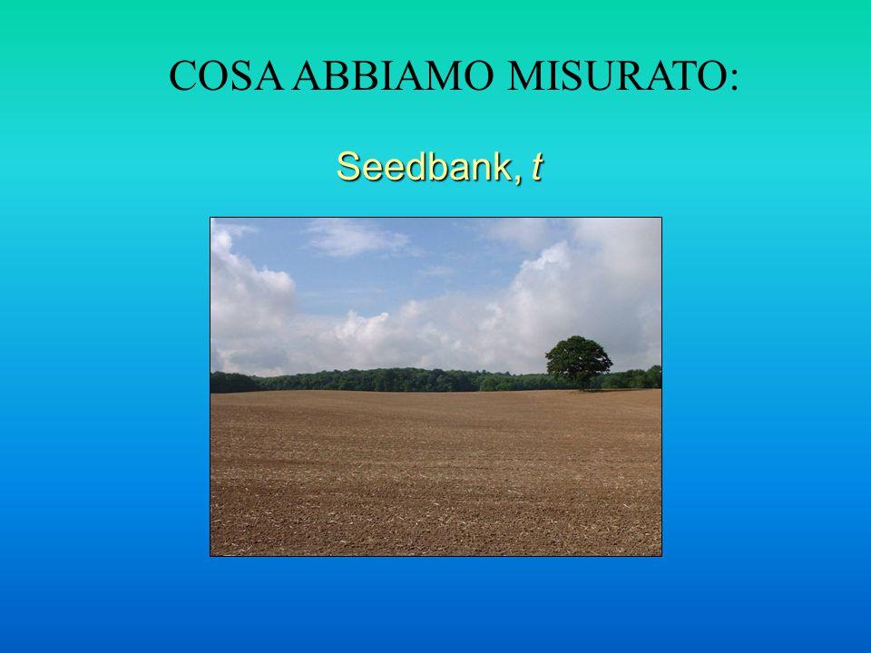 COSA ABBIAMO MISURATO: Seedbank, t