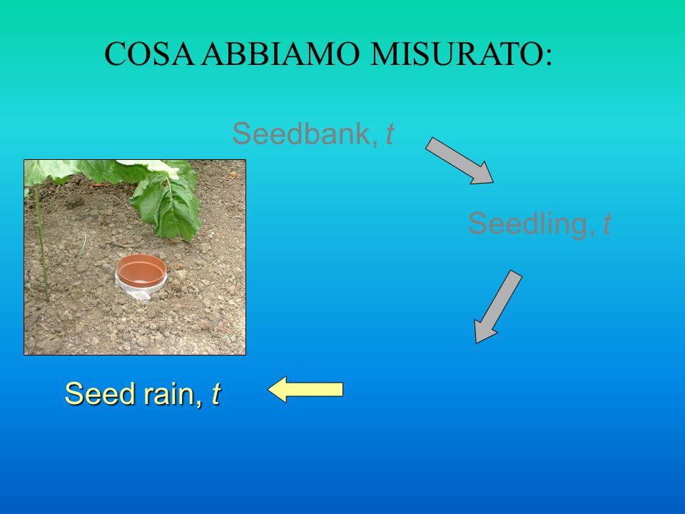 Seedbank, t Seedling, t COSA ABBIAMO MISURATO: Seed rain, t