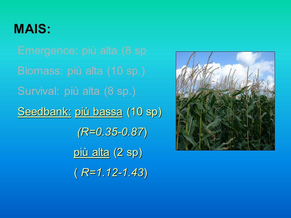 MAIS: Emergence: più alta (8 sp Biomass: più alta (10 sp.) Survival: più alta (8 sp.) Seedbank: più bassa (10 sp) (R=0.35-0.87) (R=0.35-0.87) più alta (2 sp) più alta (2 sp) ( R=1.12-1.43) ( R=1.12-1.43)