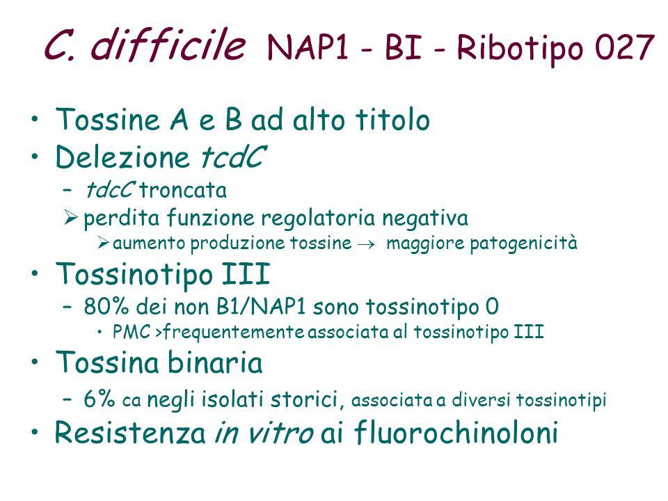 C. difficile NAP1 - BI - Ribotipo 027 Tossine A e B ad alto titolo Delezione tcdC –tdcC troncata  perdita funzione regolatoria negativa  aumento pro