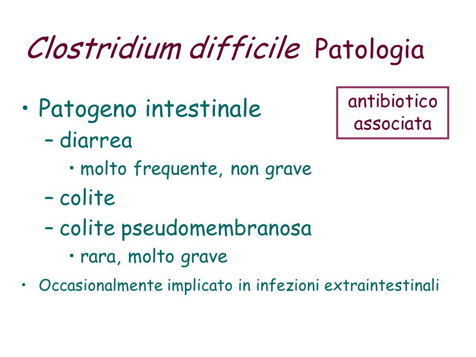 Microbiota C.