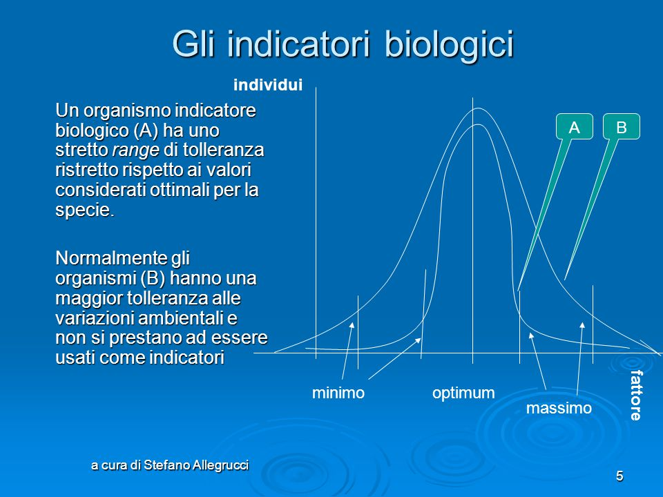 a cura di Stefano Allegrucci 5 Gli indicatori biologici Un organismo indicatore biologico (A) ha uno stretto range di tolleranza ristretto rispetto ai valori considerati ottimali per la specie.