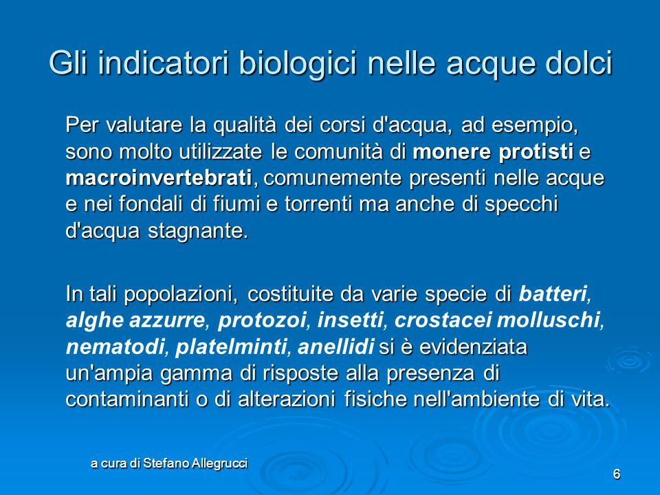 a cura di Stefano Allegrucci 5 Gli indicatori biologici Un organismo indicatore biologico (A) ha uno stretto range di tolleranza ristretto rispetto ai