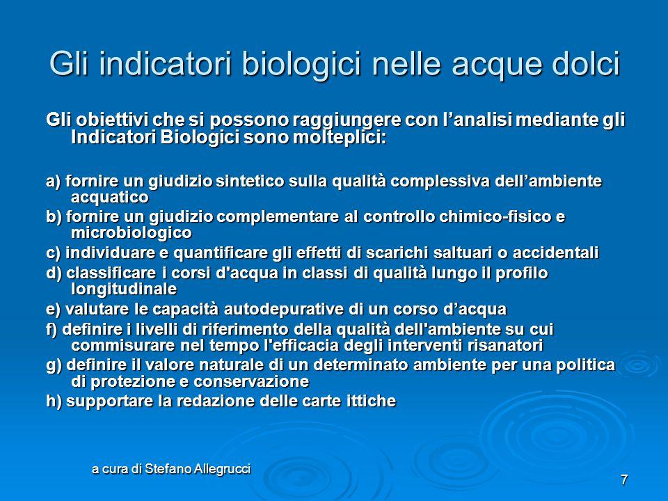 a cura di Stefano Allegrucci 6 Gli indicatori biologici nelle acque dolci Per valutare la qualità dei corsi d'acqua, ad esempio, sono molto utilizzate
