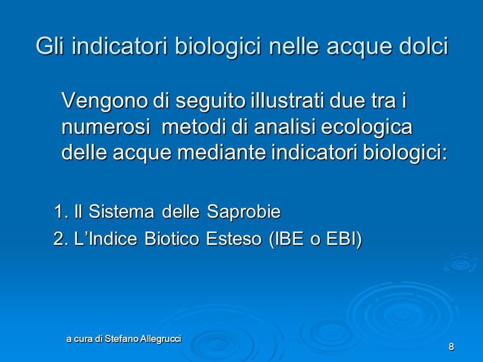 a cura di Stefano Allegrucci 18 Il sistema delle saprobie indice (S) grado di inquinamento zona saprobia colore di riferimento classe 1.00 - 1.50 molto lieve oligosaprobiaI 1.51 - 1.80 lieve oligo /  -mesosaprobia I/II 1.81 - 2.30 moderato  -mesosaprobia II 2.31 - 2.70 discreto  /  -mesosaprobia II/III 2.11 - 3.20 grave  -mesosaprobia III 3.21 - 3.50 piuttosto grave  --meso/polisaprobia III/IV 3.51 - 4.00 molto grave polisaprobiaIV Tabella riassuntiva per la valutazione finale