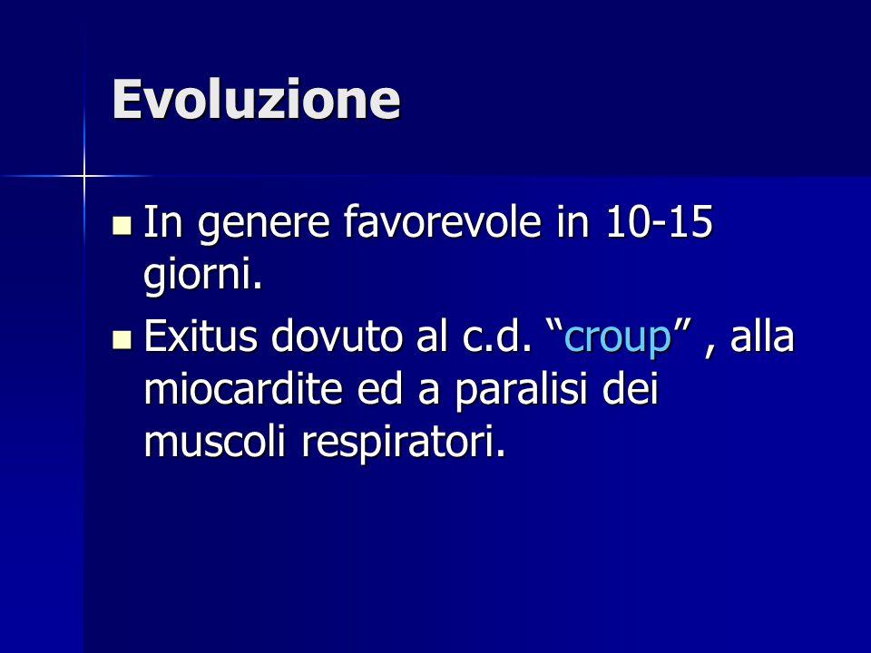 """Evoluzione In genere favorevole in 10-15 giorni. In genere favorevole in 10-15 giorni. Exitus dovuto al c.d. """"croup"""", alla miocardite ed a paralisi de"""