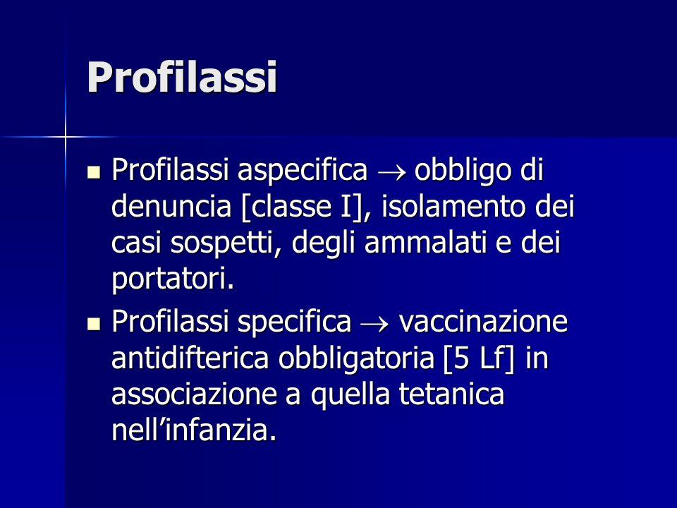 Profilassi Profilassi aspecifica  obbligo di denuncia [classe I], isolamento dei casi sospetti, degli ammalati e dei portatori.