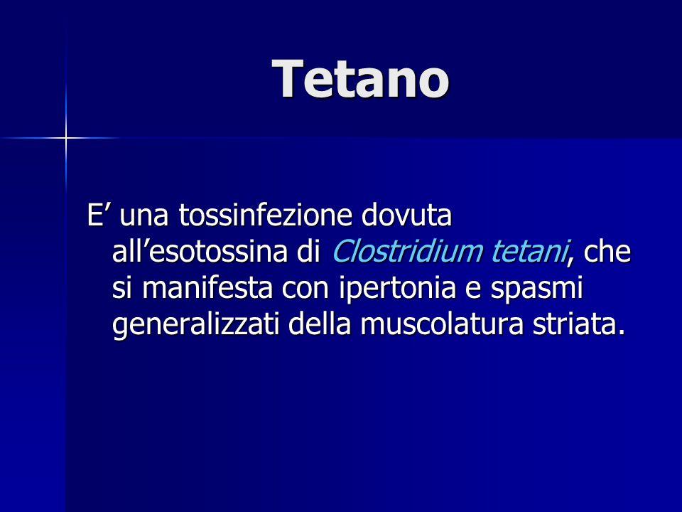 Tetano E' una tossinfezione dovuta all'esotossina di Clostridium tetani, che si manifesta con ipertonia e spasmi generalizzati della muscolatura striata.